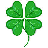 Clover Leaf Royalty Free Stock Photos