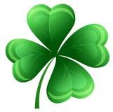 Clover leaf Stock Image