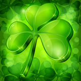 Clover leaf on green Stock Images