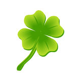 Clover leaf Royalty Free Stock Photography