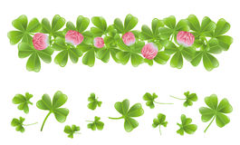 Clover leafs banner Royalty Free Stock Photos