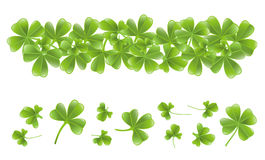 Clover leafs banner Stock Photos