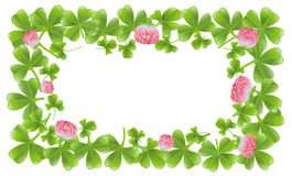 Clover leafs frame Stock Image