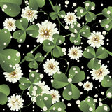 Clover leaves background. Background illustration with clover leaves and flowers, abstract art Stock Images
