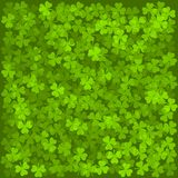 Clover Leaves Background. Green Texture. Vector. Illustration Royalty Free Stock Photography