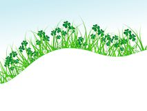 Clover in grass Stock Photo