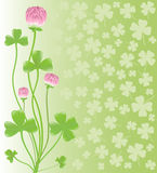 Clover ornament. Background for design. Vector-Ill Royalty Free Stock Images