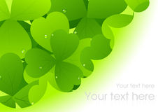 Clover pattern Royalty Free Stock Photography