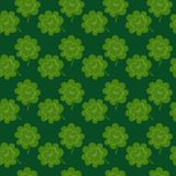 Clover seamless pattern Royalty Free Stock Photos
