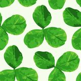 Clover seamless pattern Stock Image