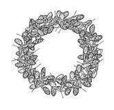 Clover seeds round frame gray stock illustration