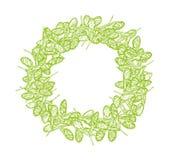 Clover seeds round frame lime-01 royalty free illustration