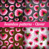Clover. Set of seamless patterns.  Vector set. Stock Photography