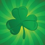 Clover or shamrock Royalty Free Stock Images