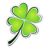 Clover sticker Stock Image