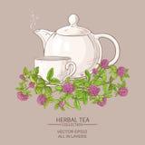 Clover tea illustration Stock Photo