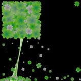 Clover tree Stock Image