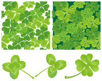 Clover. Vector seamless background. Stock Photos