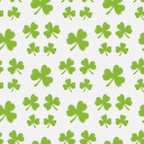 Clover Royalty Free Stock Photo