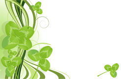 Clover. Vector template. Royalty Free Stock Image