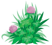 Clover2 Stock Images