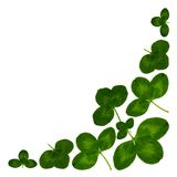 CloverCornerWhite. Corner with green leaves of clover on white background stock photography