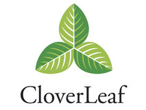 CloverLeaf logo. A  logo that can be used for company branding Stock Images