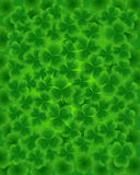 Clovers Stock Images
