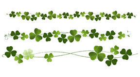 Clovers Dividers Royalty Free Stock Photo