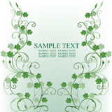 Clovers foliage, card for St. Patrick's Day Royalty Free Stock Photography