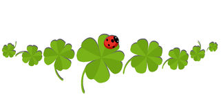 Clovers with an ladybug Stock Photography