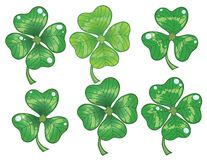 Clovers Leaf Stock Photography