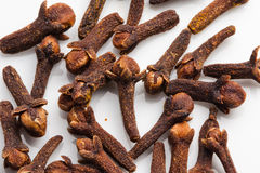 Cloves. An important ingredient in Malaysian dishes Stock Images
