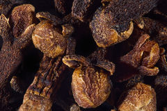 Cloves. A macro shoot of a bunch of cloves Stock Photography