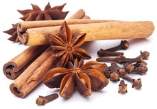 Cloves, anise and cinnamon. Stock Images
