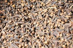 Cloves background Stock Photography