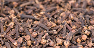 Cloves Background Royalty Free Stock Photography