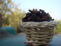 Cloves in the basket. Hot spice cloves in bamboo basket, very well know spice of india Stock Image