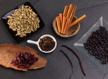 Cloves cardamom cinnamon vanilla juniper berries and cranberries Stock Images
