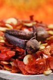 Cloves and chilly flakes. Beautiful shot of cloves and chilly flakes Royalty Free Stock Image