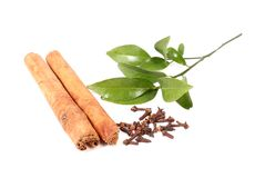 Cloves and cinnamon Stock Photography