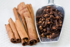Cloves and Cinnamon sticks Royalty Free Stock Images