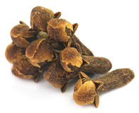 Cloves Stock Photography