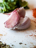 Cloves of Garlic Stock Photography