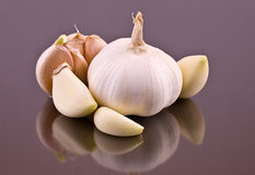 Cloves of garlic Royalty Free Stock Photography
