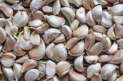 Cloves of garlic harvest on a wooden table Stock Photos