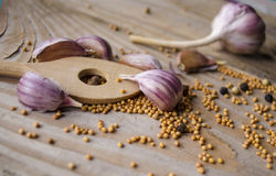 Cloves of garlic, mustard seeds and spoon on wooden board. Rustic style garlic on vintage wooden background. Fresh garlic clove. G Royalty Free Stock Photo