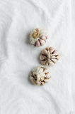 Cloves of garlic over white cloth Royalty Free Stock Photo