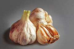 A cloves of Garlic. Royalty Free Stock Image