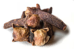 Cloves isolated on a white background. Close-up Stock Photo